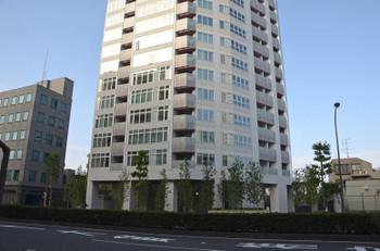 Tokyoshirokanedai15035