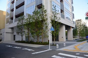 Tokyoshirokanedai15037