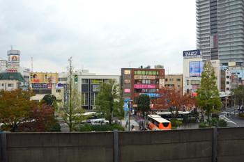 Tokyokoiwa15031