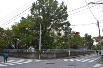 Kawasakikosugi150332