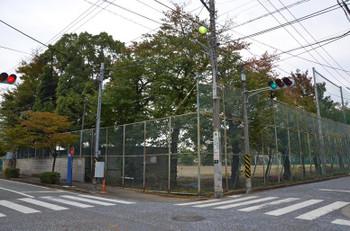 Kawasakikosugi150333