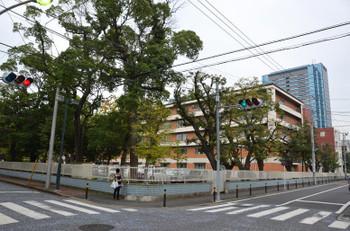 Kawasakikosugi150335