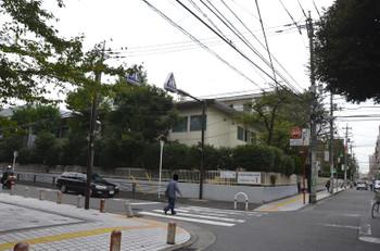 Kawasakikosugi150337