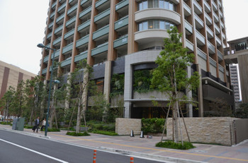 Kawasakikosugi150413