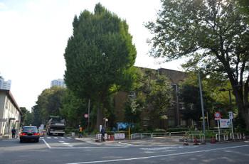 Tokyotokyounv15045