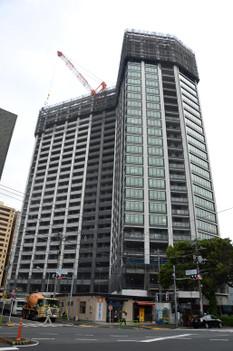 Tokyorkatidoki150613