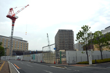 Chibakashiwanoha150513