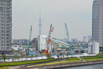 Tokyoharumi150713