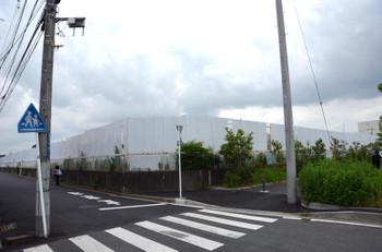 Yokohamaapple15075