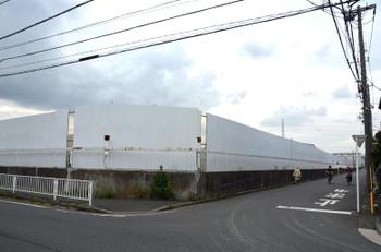 Yokohamaapple15076