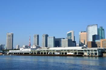 Tokyotoyosushijou15077