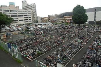 Chibatsudanuma15072