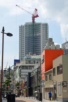 Yokosukaotaki150732