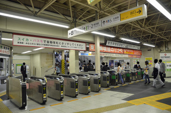 Yokohamakikuna150821
