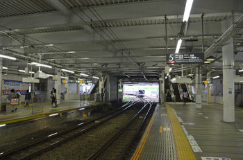 Yokohamakikuna150824