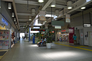 Tokyohaijima150912