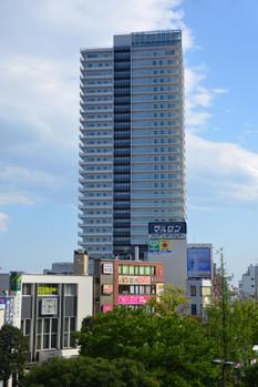 Tokyokoiwa150911