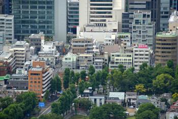 Tokyoaoyama15092