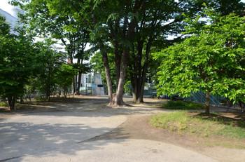 Tokyomiyashitapark151020