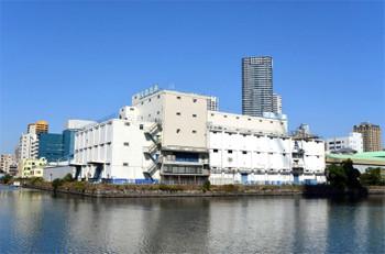 Tokyokatidoki151114
