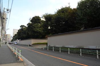 Tokyoseibu15113
