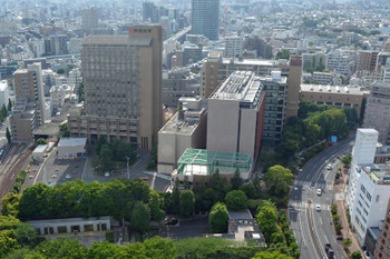 Tokyochuou15113