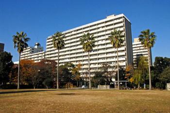 Tokyotoyoumi15112