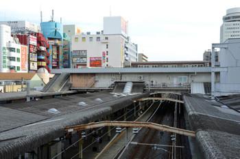 Chibamatsudo16015