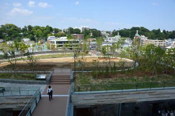 Tokyotamagawa160213