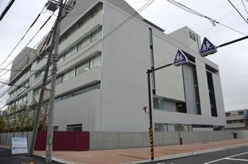 Kawasakikosugi160319