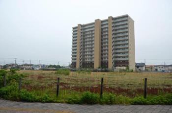 Chibakashiwanoha16074