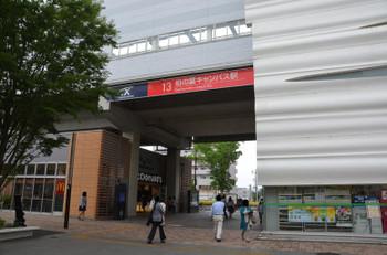 Chibakashiwanoha16076