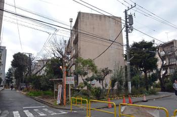 Tokyoaoyama16074