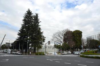 Tokyojpnsport16087