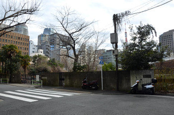 Tokyopfi16083
