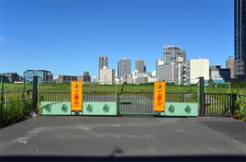 Tokyoariake16095