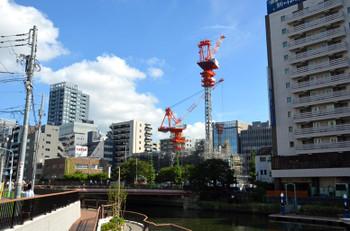 Tokyoshinkawa16107