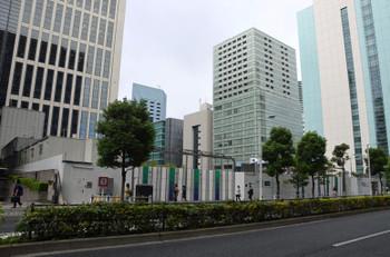 Tokyoshiba16104