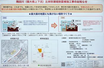 Tokyosumidagawa161112