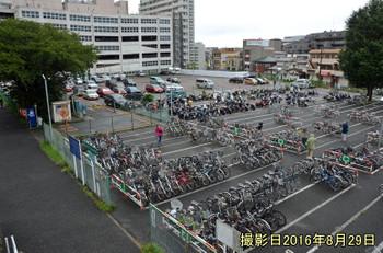 Chibatsudanuma161212