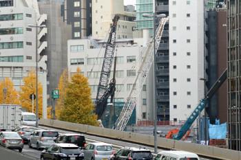 Tokyonanpeidai161214