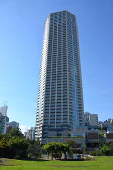 Tokyotomihisa170128