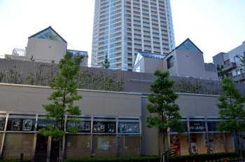 Tokyotomihisa170132