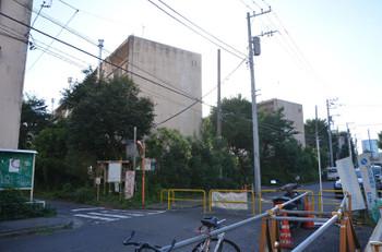 Tokyoaoyama170113