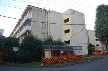 Tokyoaoyama170114