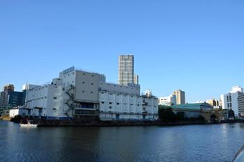 Tokyokatidoki170211