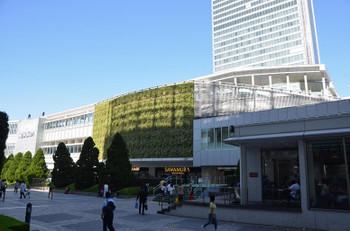 Tokyoshinjuku170273