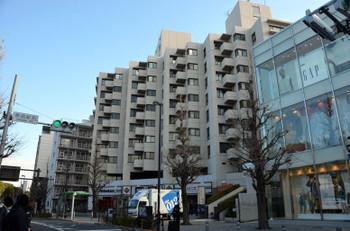 Tokyoharajuku170314