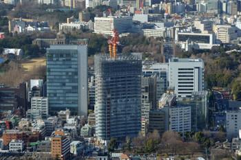 Tokyoaoyama170312