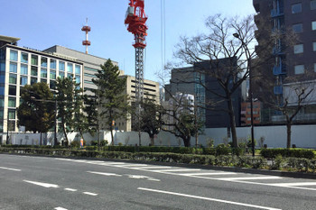 Tokyoshiba170313